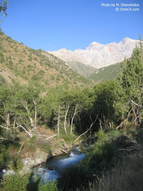 Sayram-su river