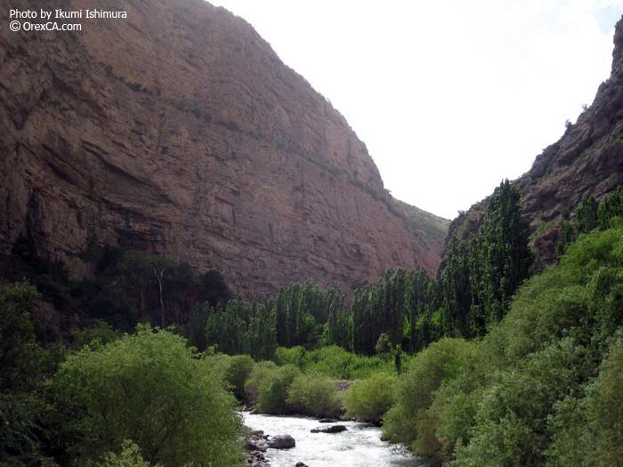 South of Uzbekistan