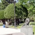 Batumi pictures