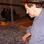 Грузия - страна виноделия