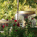 Pictures of Tashkent