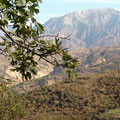 Чарвакские горы