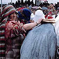"""Traditions  of Uzbekistan —  Uzbek wedding: welcome brides """"Kelin salom""""  Узбекская свадьба: приветствие невесты """"Келин салом"""""""