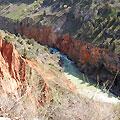 Тур - Конный трек по реке Пскем