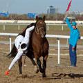 Kazakhstan pictures