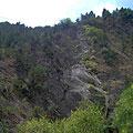 Zaamin National Park