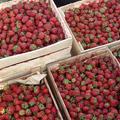 Natural strawberry in May in Uzbekistan — Майская клубника в Узбекистане
