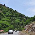 Горные леса Китабского перевала