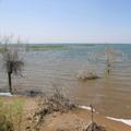 Aydarkul Lake. Kizil-Kum desert