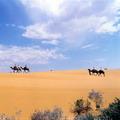 Kizil-Kum desert