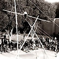 Circus racers. H. Divanov