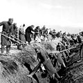 Clearing of an irrigating network in collective farm. Tashkent. 1944.  V. Kosovskiy