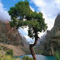 Природа Таджикистан