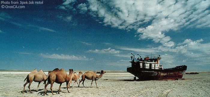 Image result for aral sea 1950