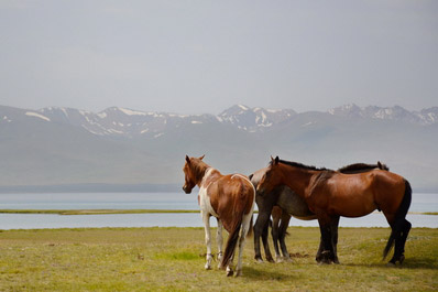 Nomads and Nature of Kyrgyzstan Tour