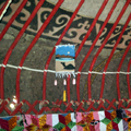 Pictures of Yurts